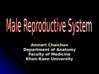 male_repro.sys.ppt