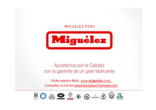 Presentación MIGUELEZ PERU INDUSTRIA FAMETAL.pdf