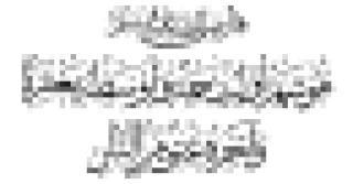 rnon_2_03.pdf