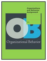 Organizations and Behavior Assignment.docx